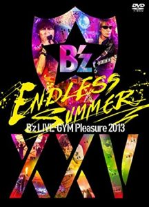 GYM Pleasure 2013 ENDLESS SUMMER-XXV BEST【完全盤】